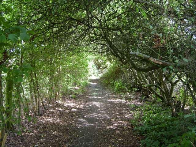 233-neat-kenilworth-footpath