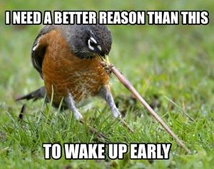 bird-worm-2
